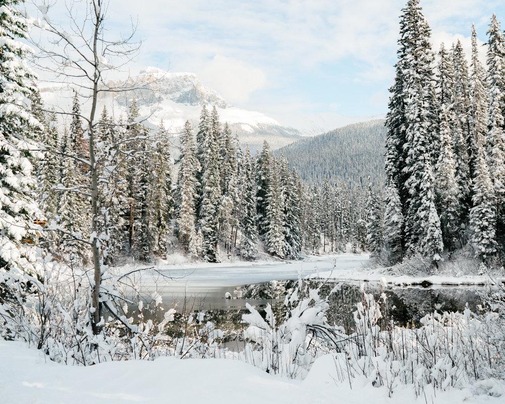 Winter wonderland in Banff National Park