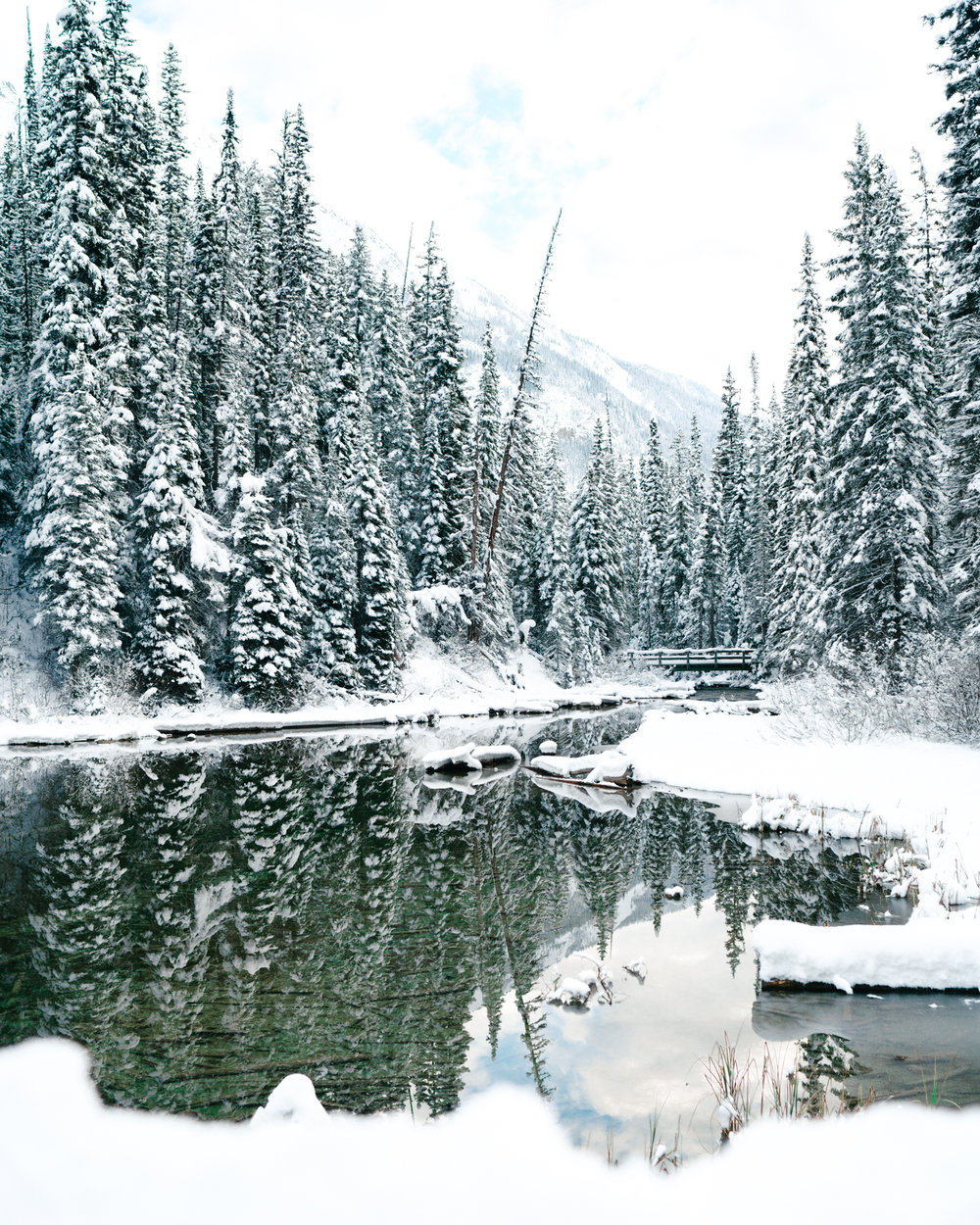 Winter Travel in Banff National Park