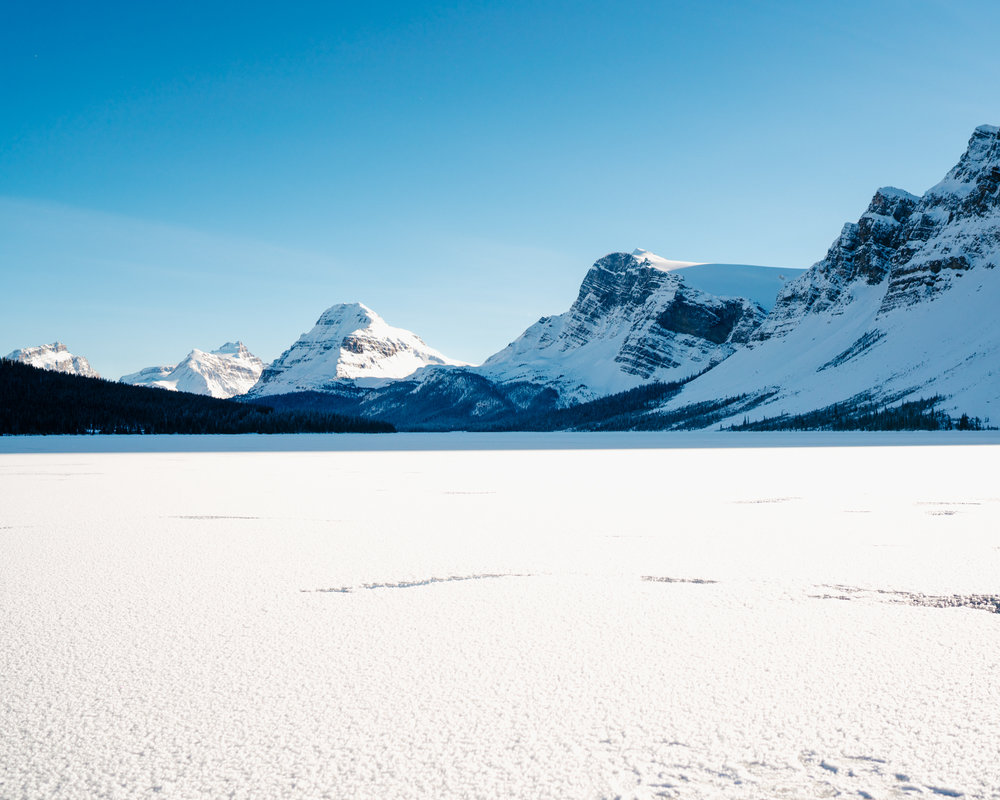 Icefields Parkway Photography Guide