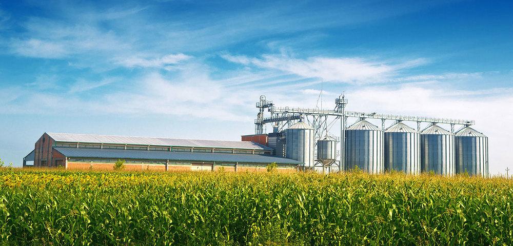 Grain-Silos-In-Corn-Field.jpg
