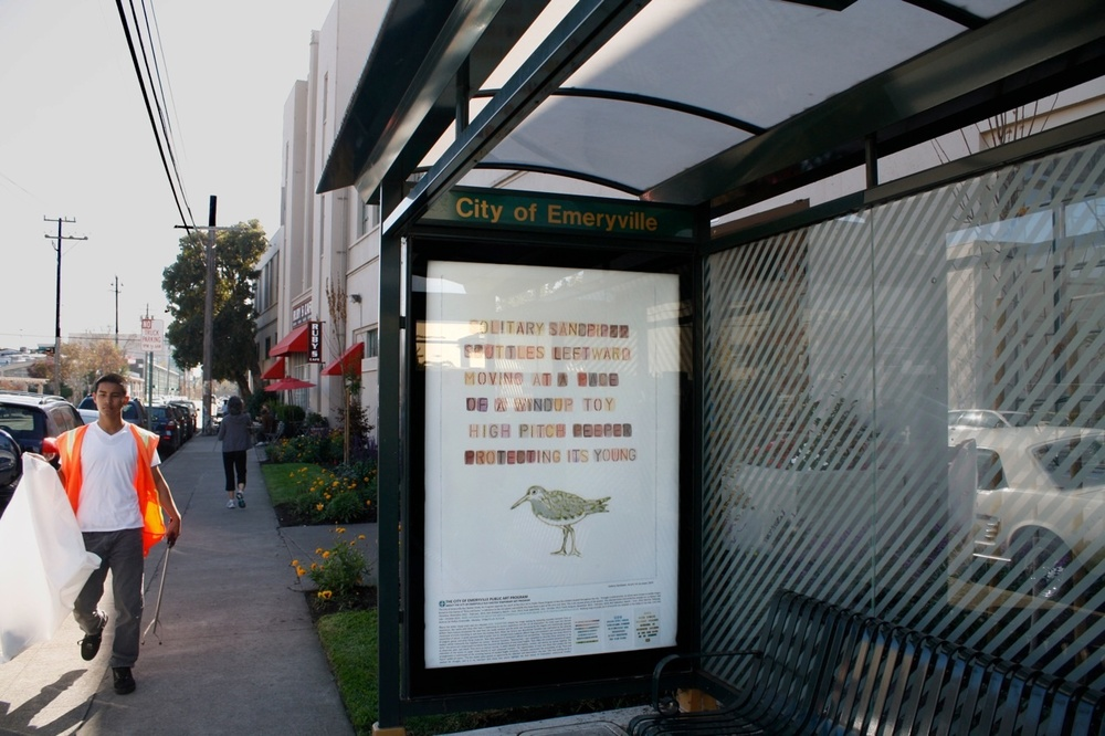 Emeryville Bus Shelter Project: Flora & Fauna