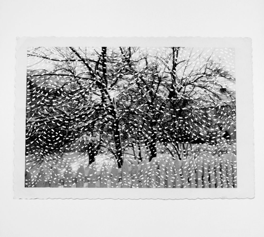 Recollection Drawn:  Winter Trees