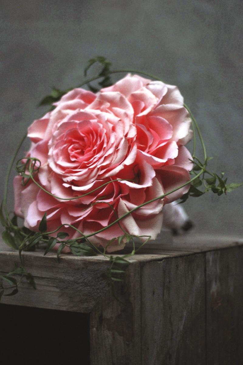 Bouquets-68.jpg