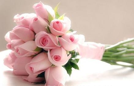 000000000000000000000000000000light-pink-tulips-bouquet.jpg