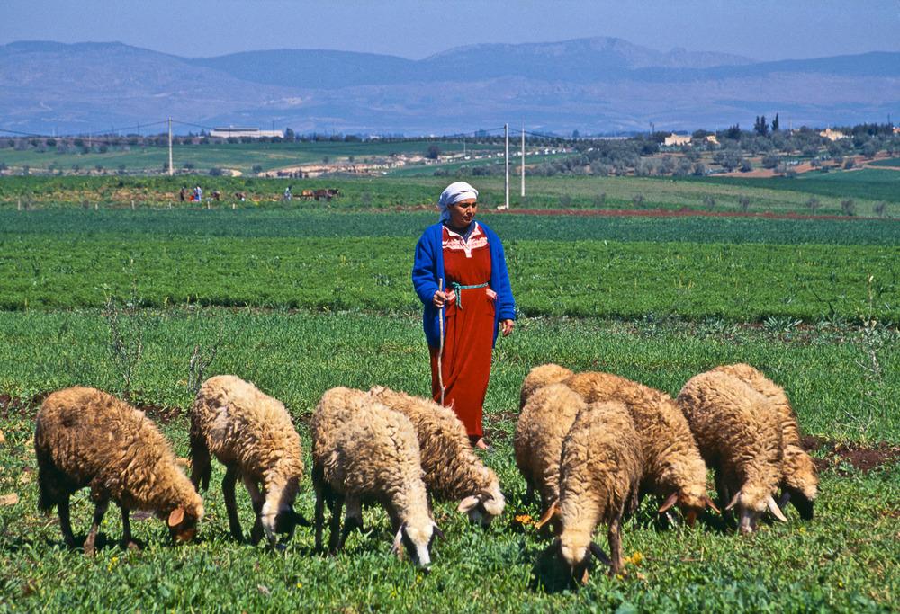 John_Stuart_Morocco1-0544.jpg