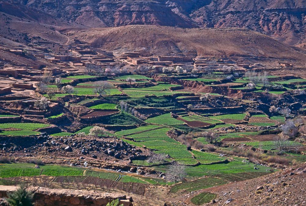 John_Stuart_Morocco1-1604.jpg