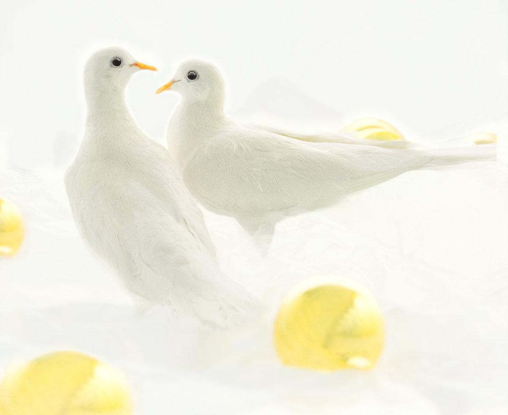 doves -christmas-balls.jpg