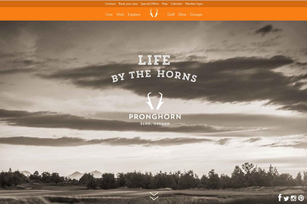 Prong Horn