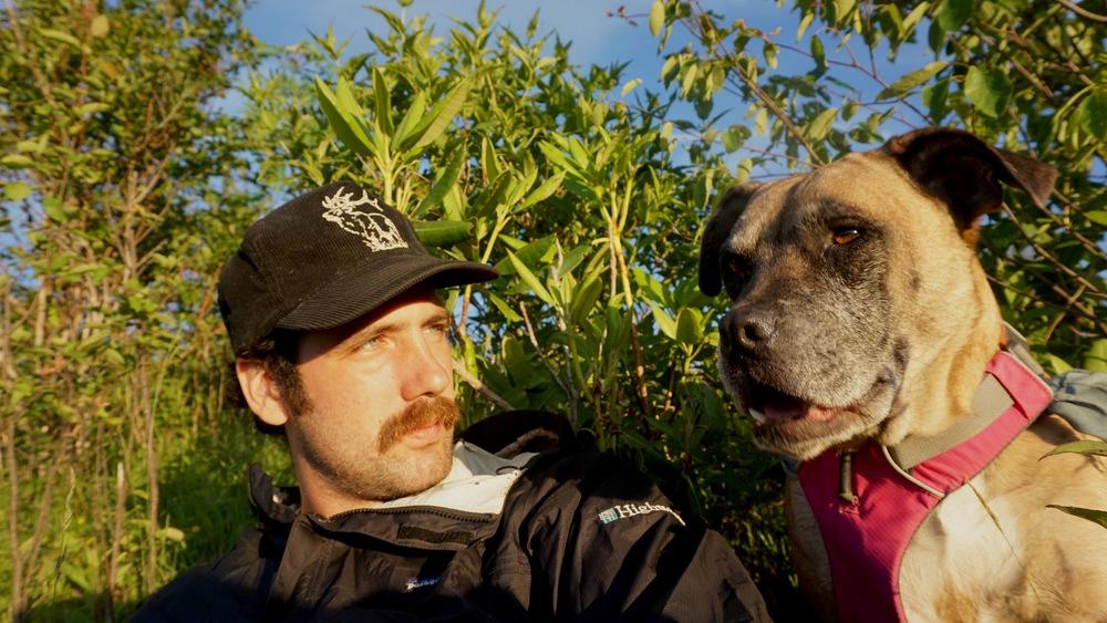 Kodiak was impressed by the sunset.
