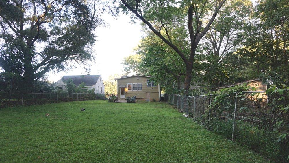 My backyard. Home sweet home.