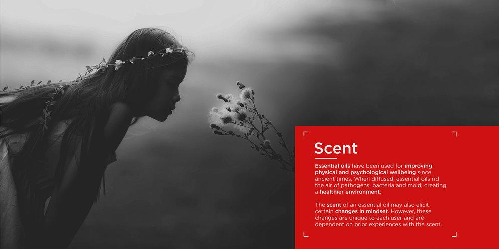 OM_website_scent-09.jpg