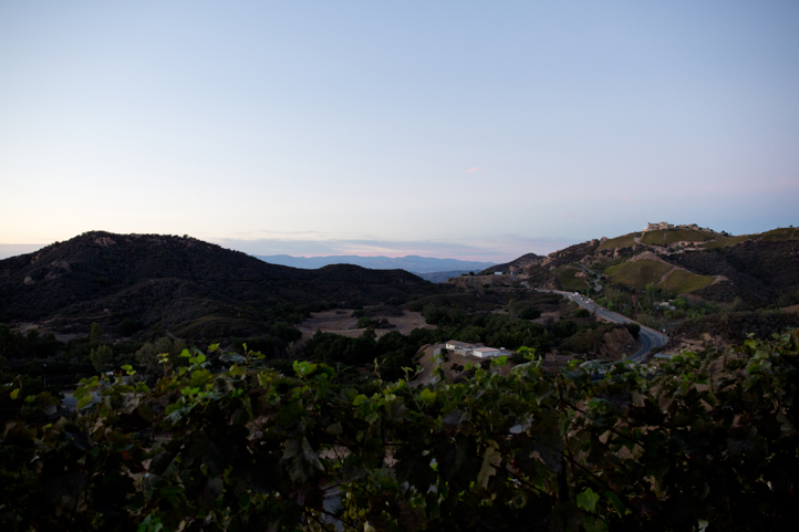 45__CarlyGaebe_SteadfastStudio_WeddingPhotography_Malibu_LosAngeles_LA_California_Winery_Hilltop_CieloFarms_Vineyard.jpg