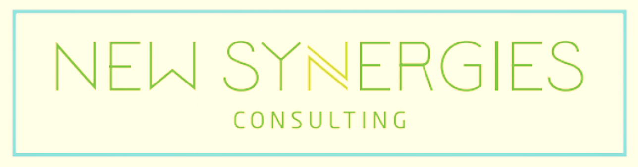 New Synergies Consulting, Inc.