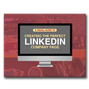 LinkedIn Perfect Page Guide