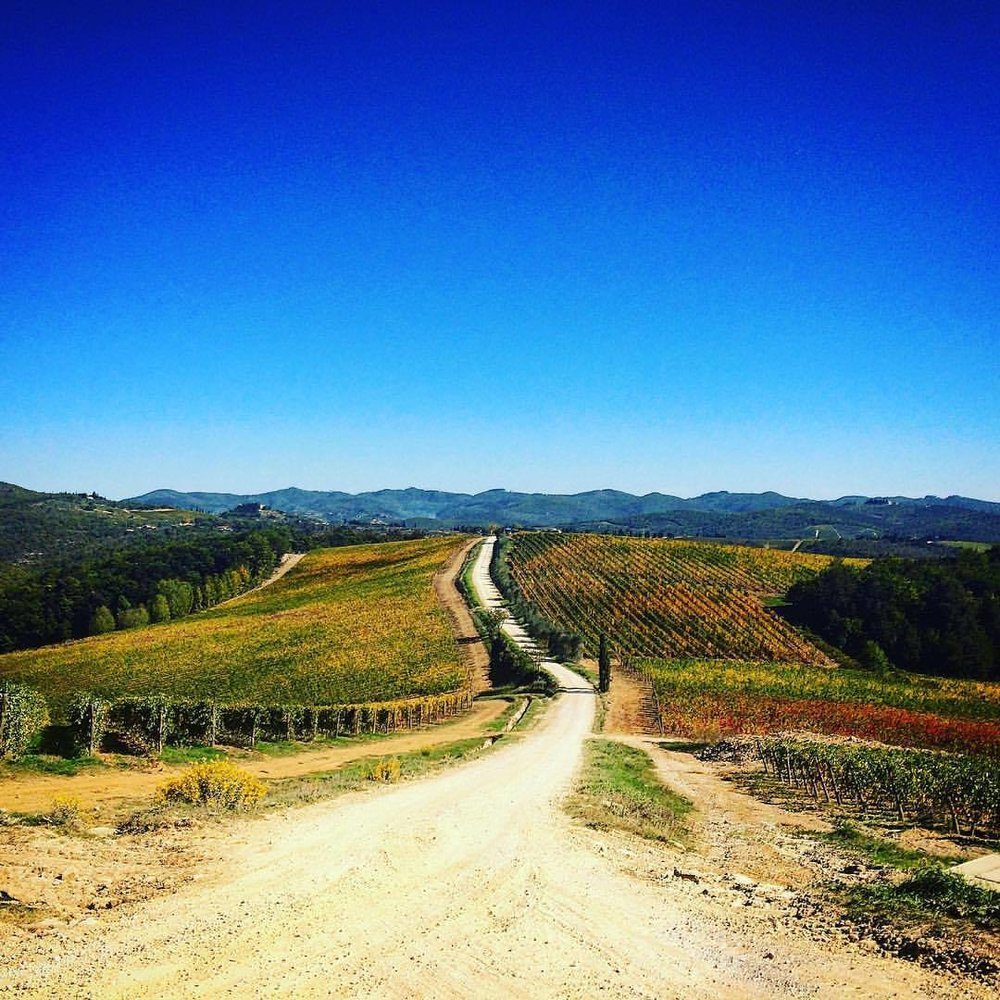 gravel road italy bici italia.jpg