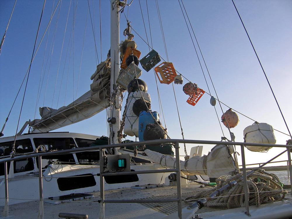 Marine Debris 2.jpg