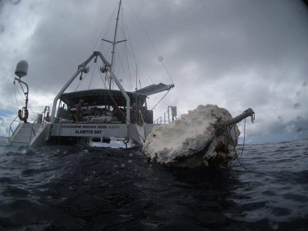 2009_north_pacific_gyre_sea_debris_alguita_hoshaw.JPG