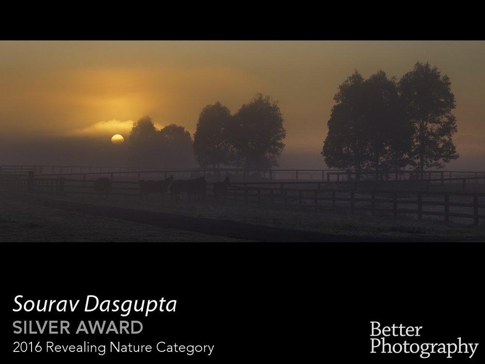 award_1332_1333_1640072208.jpg
