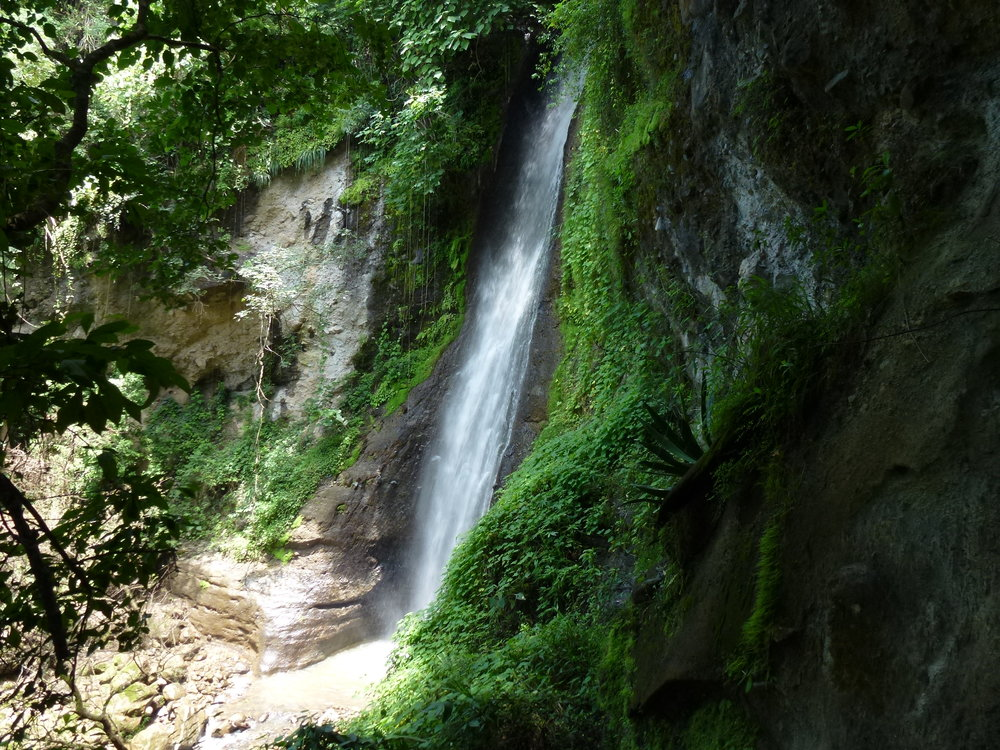 Waterfall-in-the-Reserva-Natural.jpg
