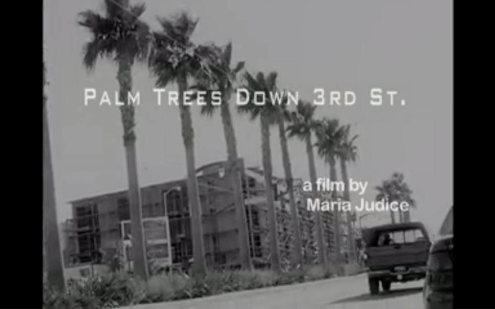palm trees down 3rd st.png