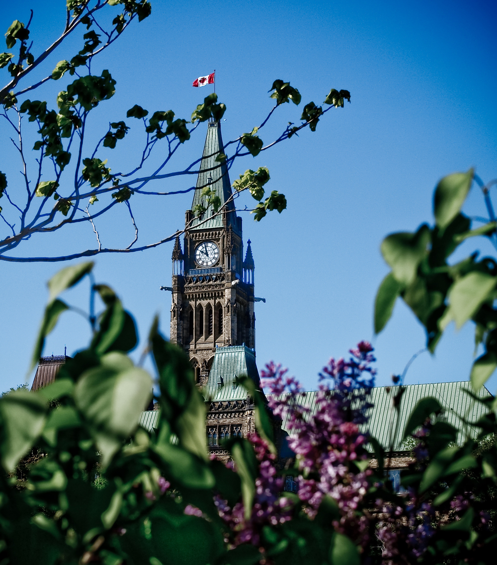 2-Peace Tower .jpg