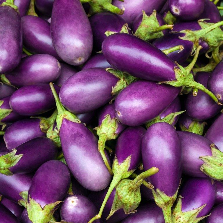 Eggplant[1].jpg
