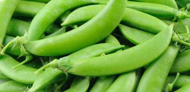 sugar_snap_peas00[1].jpg