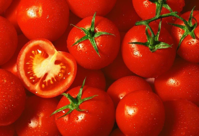 Tomatoes_iStock_000005591923Small[1][1].jpg