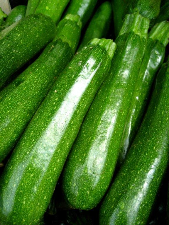 zucchini[1].jpg
