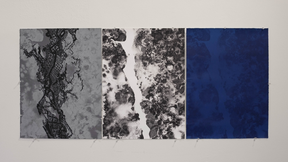Desbordado (Flooded)  2014, 20 in x 45 in (triptych), lithographic prints on Somerset White paper.  Printed by Alex Kirillov, Stonefox Editions, PA.