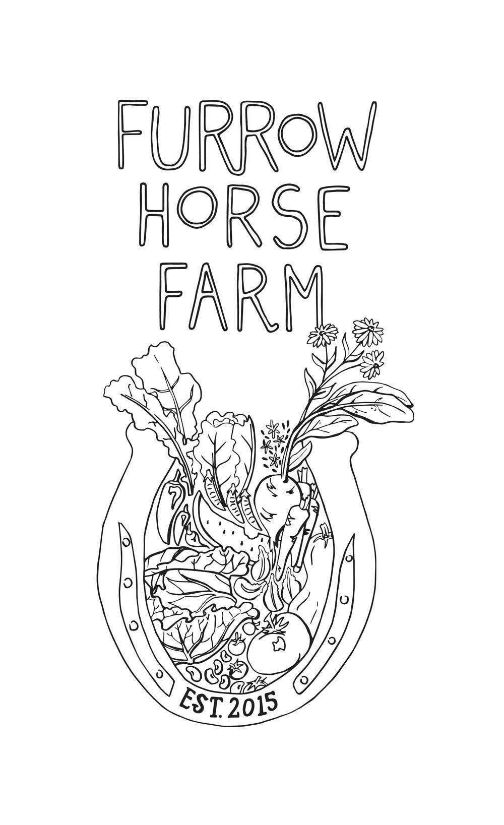 Furrow Horse Farm   Morton, WA  brochure cover design  2016