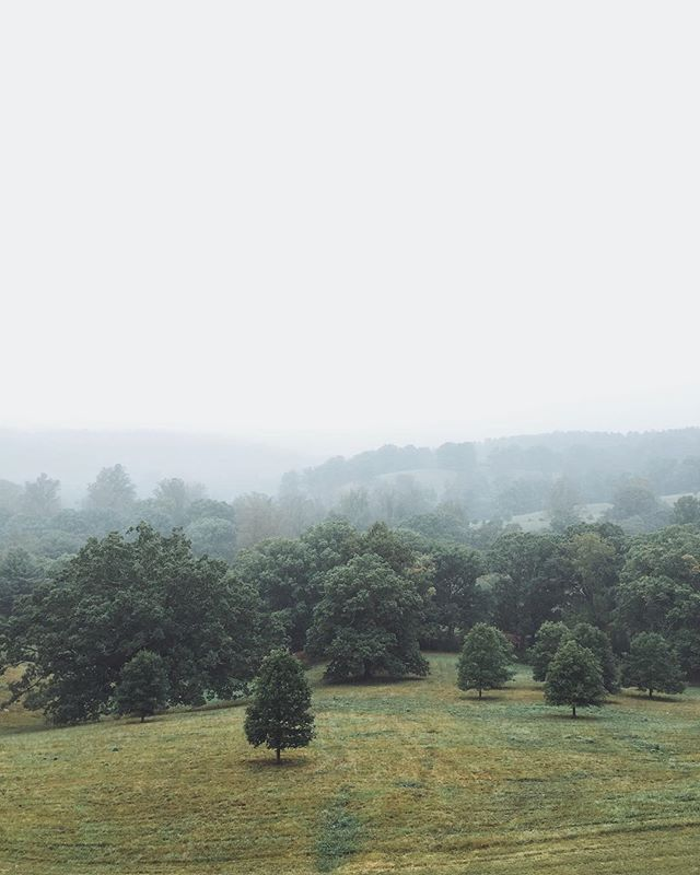 We first visited the @BiltmoreEstate with our Oma and Opa when we were barely two digits. Coming back to Asheville for our Opa's memorial we made it a point to visit this beautiful house and grounds again. Even on a rainy morning the views are stunning.