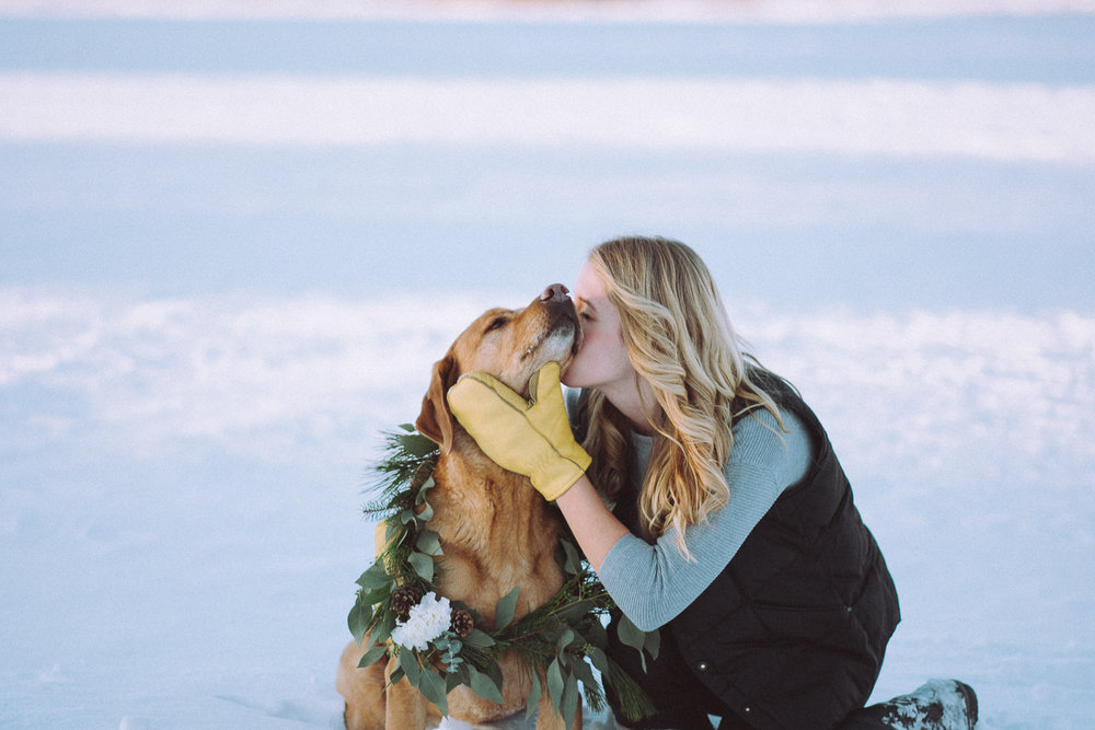 Wisconsin-Pet-Photographer-23.jpg