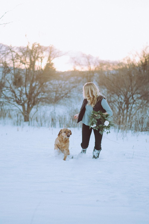 Wisconsin-Pet-Photographer-22.jpg
