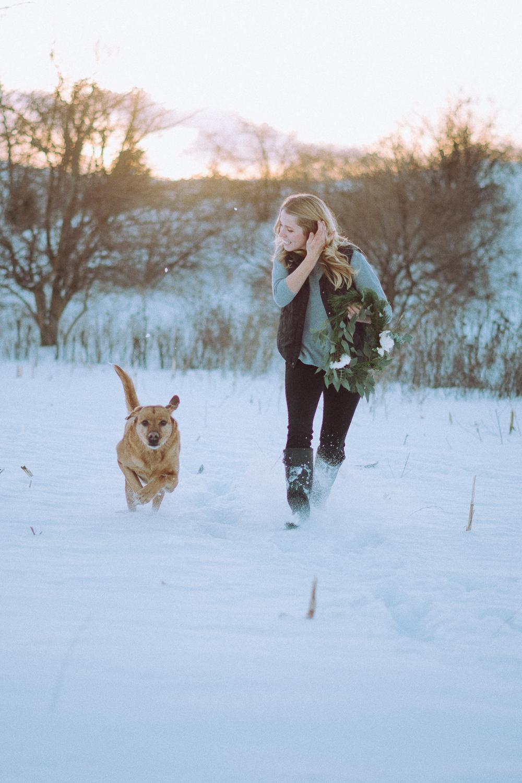 Wisconsin-Pet-Photographer-25.jpg