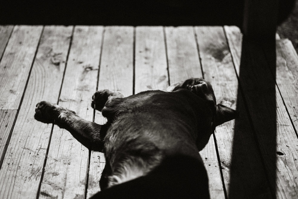 Wisconsin-Photographer-8.jpg