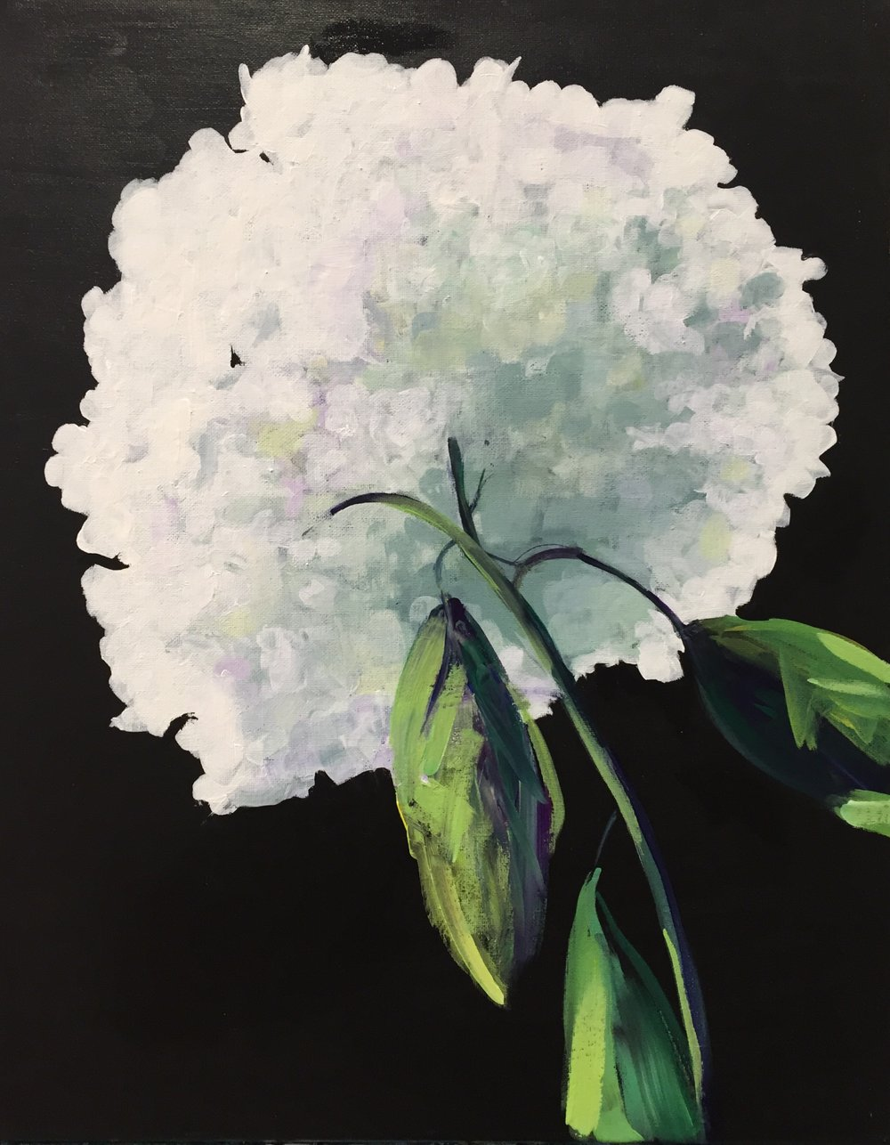 Hydrangea - Level: EasyDate: Friday, May 25, 2018Doors at 6:30pmPaint at 7:00pm - 9:00pmLocation: Meikle Studios Social Art HousePrice: $50/ guestIncludes: All art stuff and wine or beer! Marionette Winery Pinot Noir, Riesling, or Brew Pub Wit or Blonde Ale.