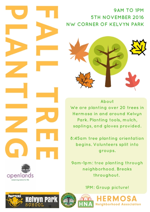 Tree planting 2.jpg