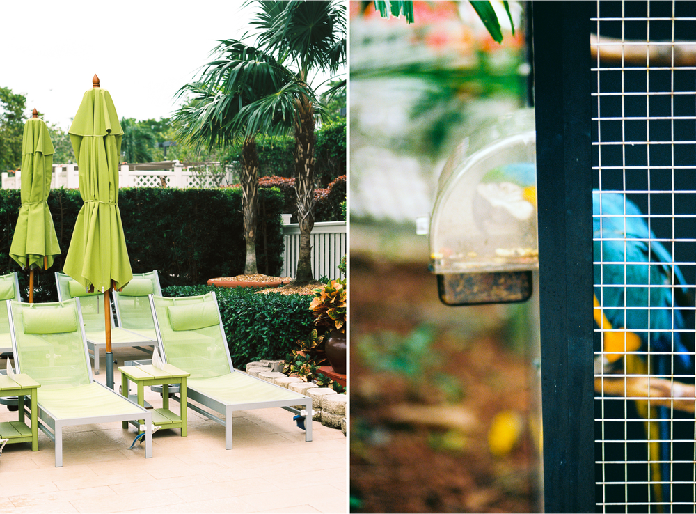 Key West Florida Wedding Film Photographer Photovision Chicago Wedding Photographer 4.jpg