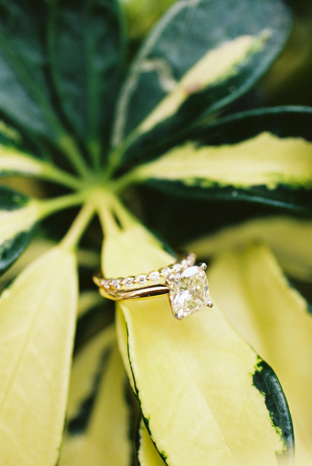 Catie Scott Studio Wedding photographer1-13.jpg