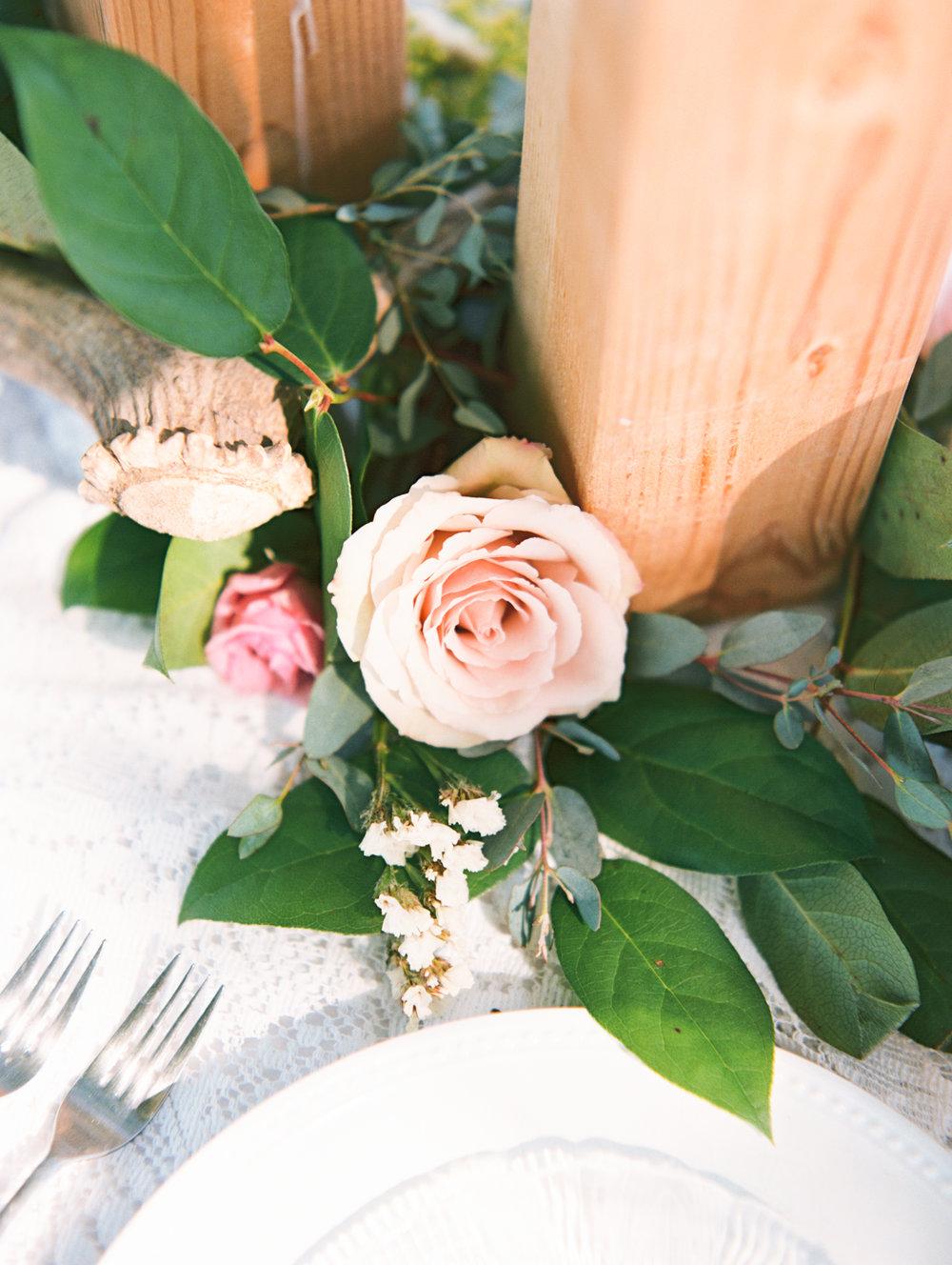 Eden Illinois florist Catie Scott Studio Film photographer3-4.jpg