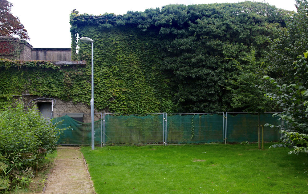 The ivy-clad bunker seen from the street, with the entrance on the left.                                                                          ©Edward Burman