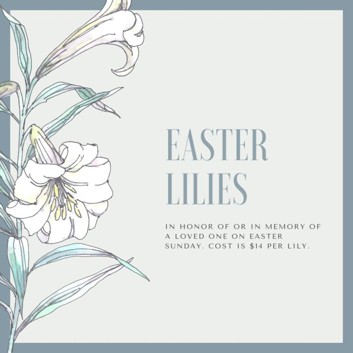 Purchase Easter lilies in Honor of or In Memory of a loved one. Cost is $14 per Lily.