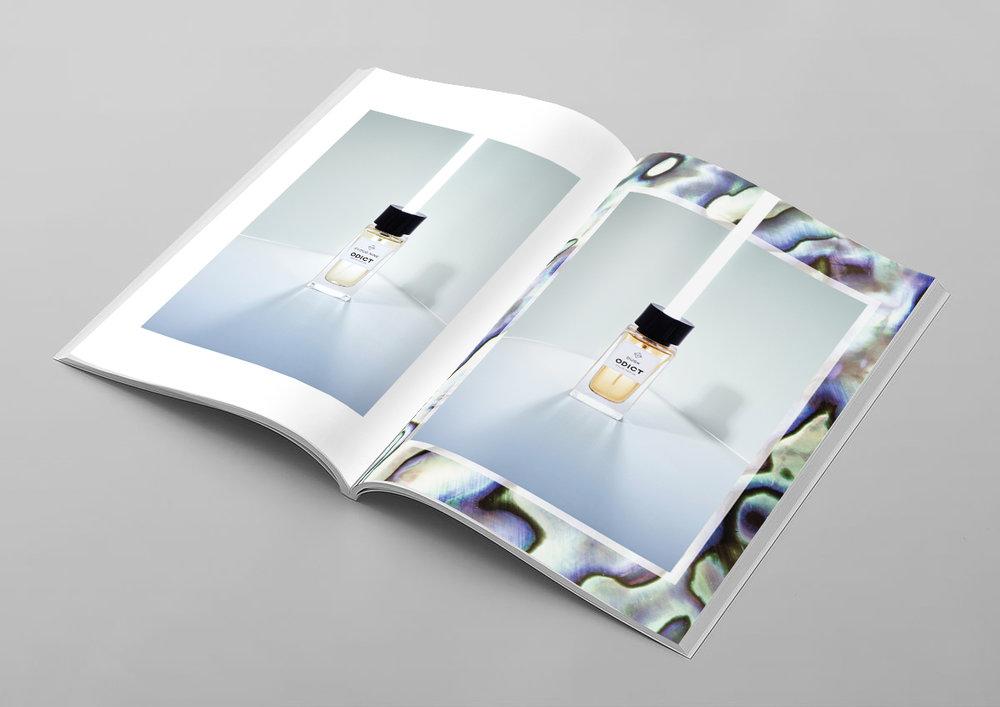 Odict-Lookbook.jpg