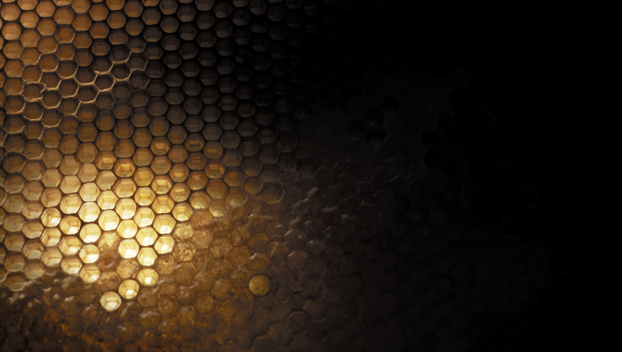 Honeycomb 008 (LR).jpg