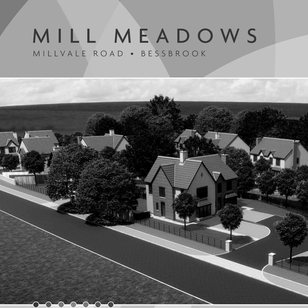 Mill Meadows