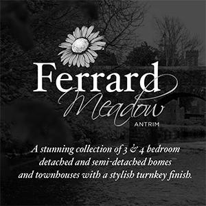 ferrard-meadow-grayscale.jpg