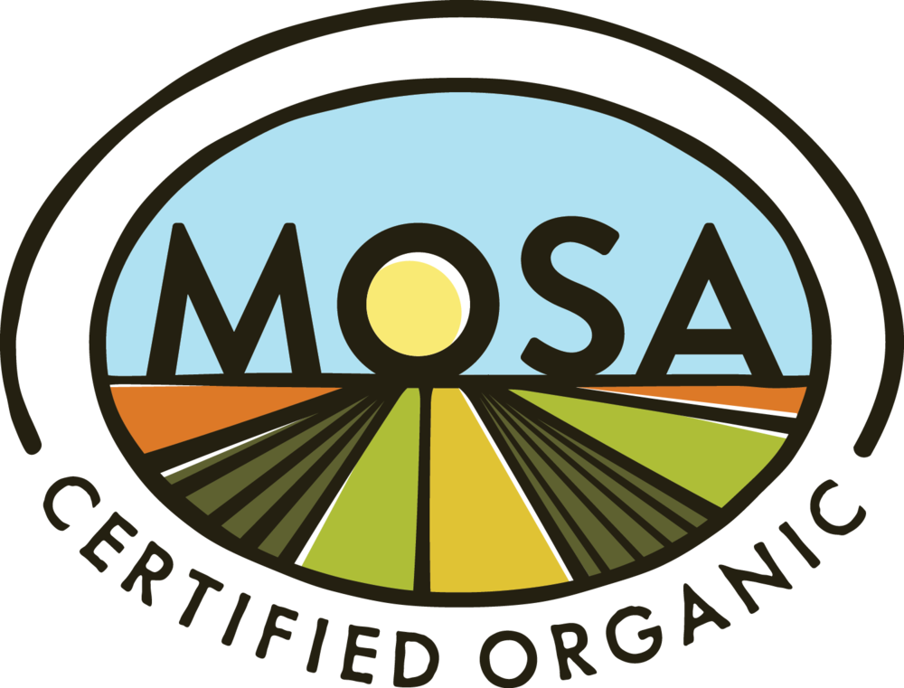 Mosa logo color hr.jpg