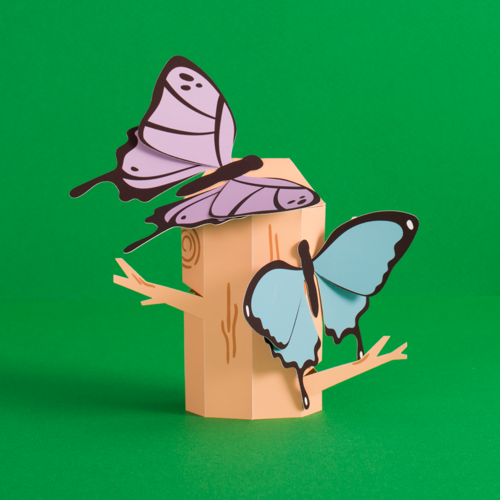 Butterflies_NoSet.jpg