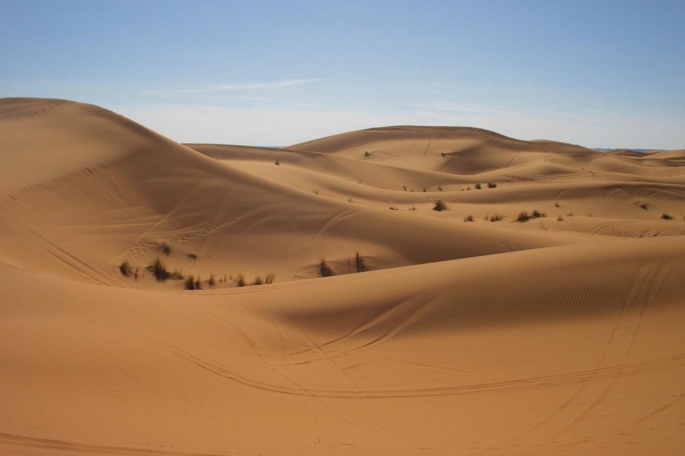 The dunes south of Zagora Morocco.